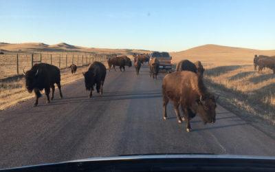 Standing Rock – Part 2